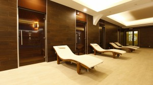 Aleksandar Palace Spa Center Realization